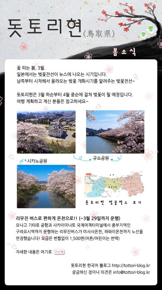 news-sakura